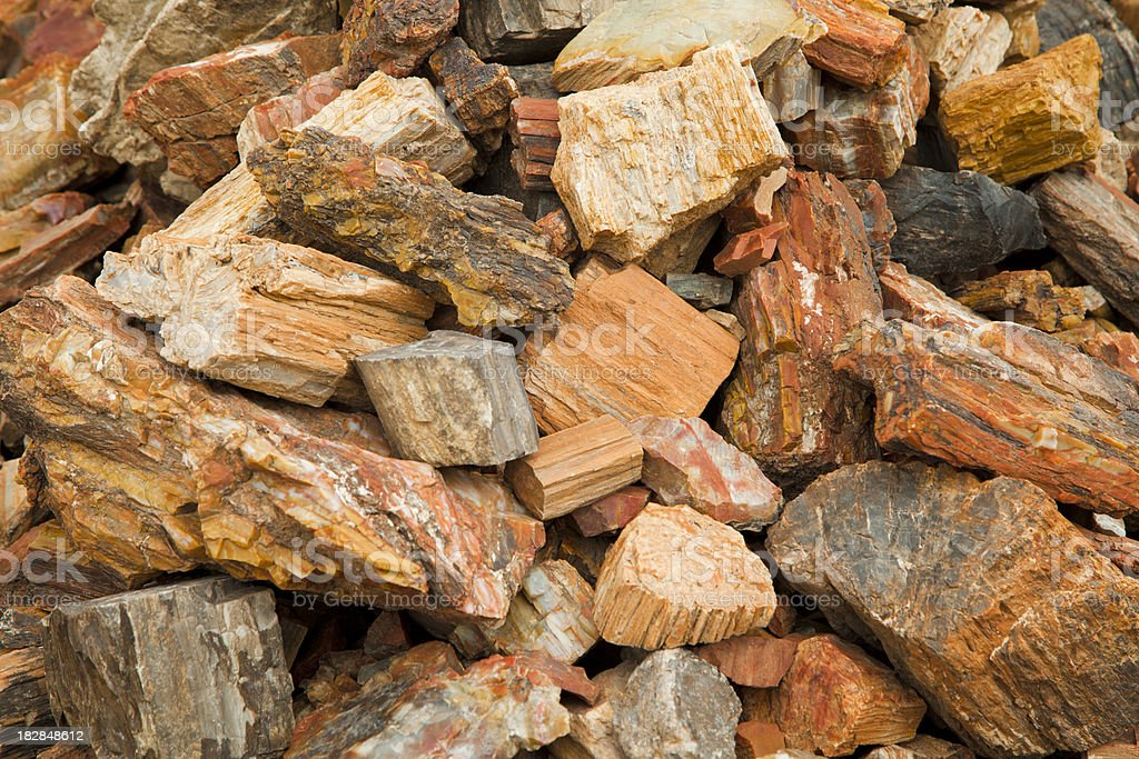 Petrified Wood, Heap, Rock Background, Mineral royalty-free stock photo
