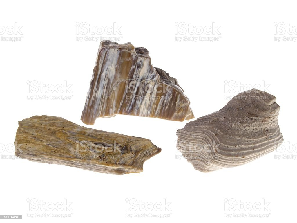 Petrified Wood stock photo
