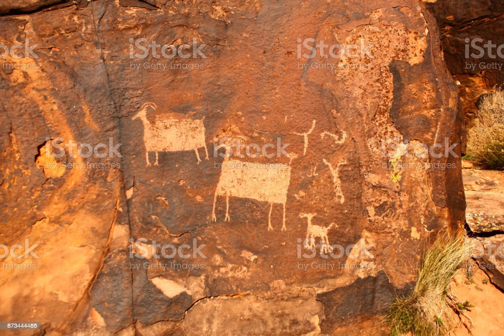petroglyphs of sheep stock photo