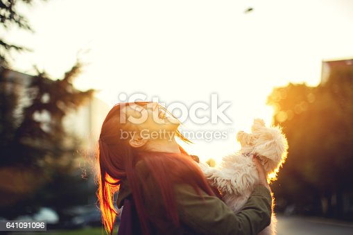 istock Pets making world a better place 641091096