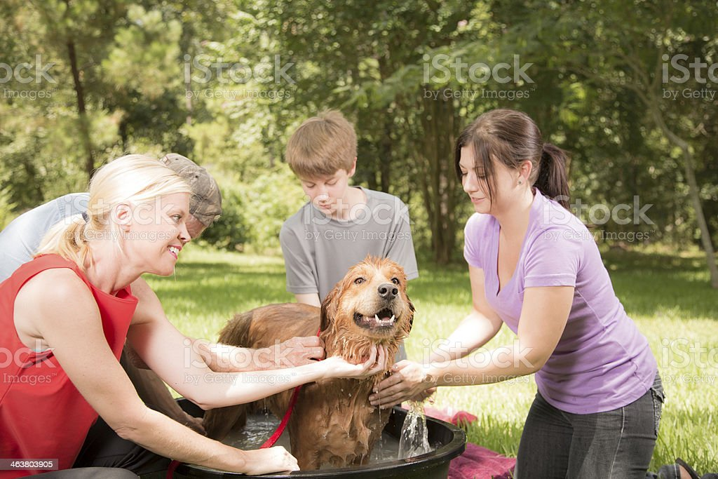 Multi-generation family washes their pet dog in the backyard. He gets...