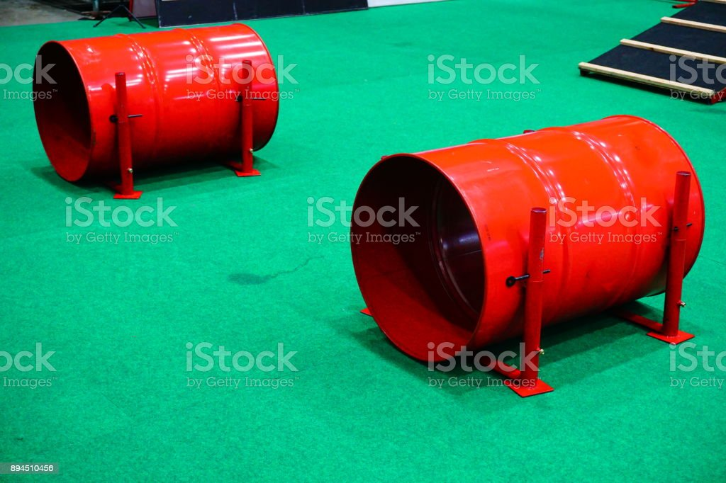 pets tunnel stock photo