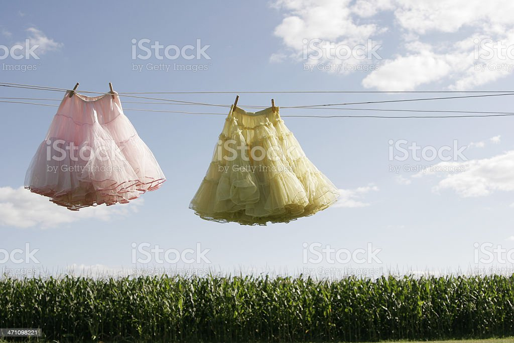 Petticoats on a Clothesline Hanging Out to Dry royalty-free stock photo