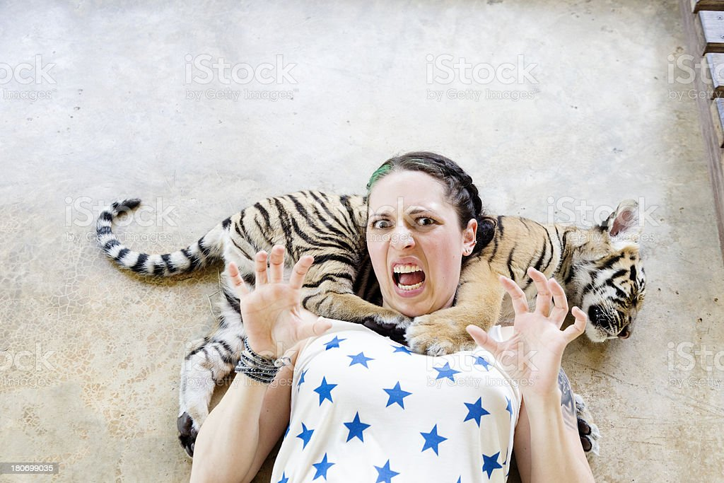 Petting a Baby Tiger royalty-free stock photo