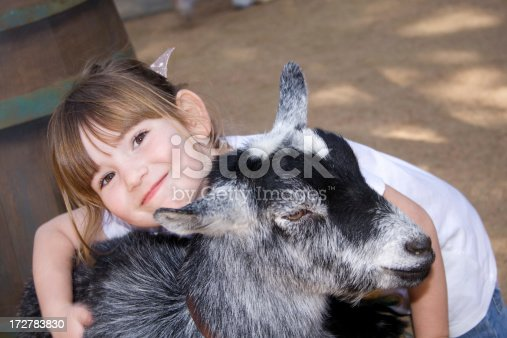 A cute little girl is hugging a goat at a petting zoo.  There is some motion blur on her hand that's petting the goat.Please visit my lightbox featuring photos of children here