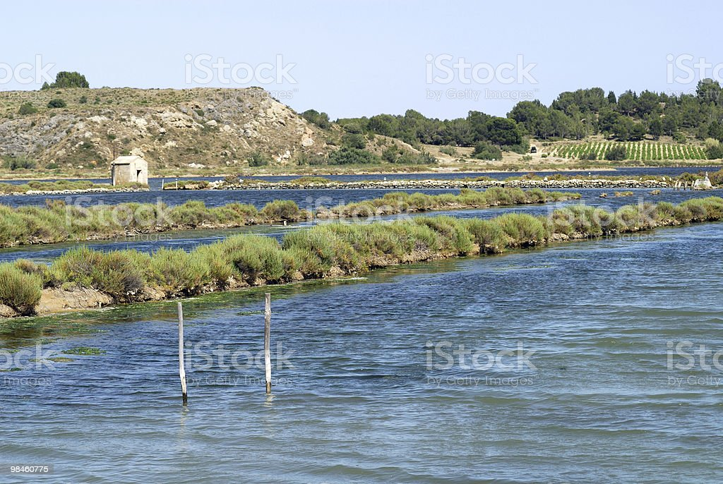 Peyriac-de-Mer (Languedoc-Roussillon, France) - Ponds royalty-free stock photo