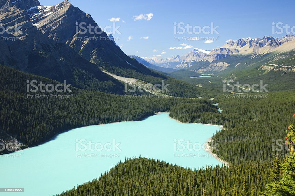 Peyto Lake, Banff National Park, Canada stock photo