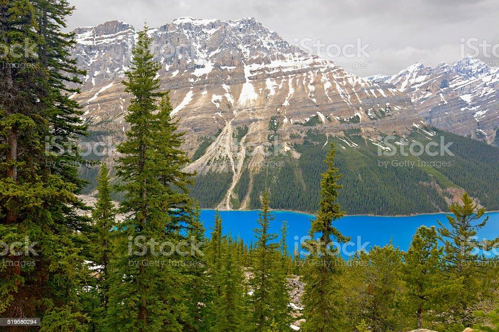Peyto Lake, Banff National Park stock photo
