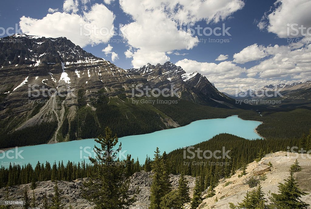 Peyto Lake, Canadian Rockies royalty-free stock photo