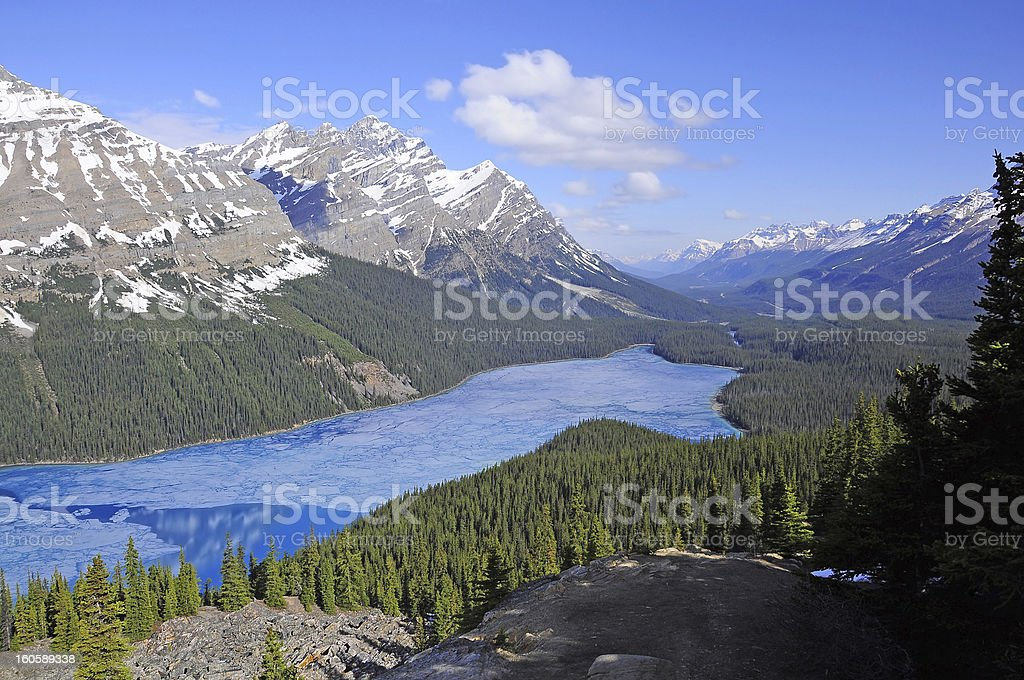 Peyto lake. royalty-free stock photo