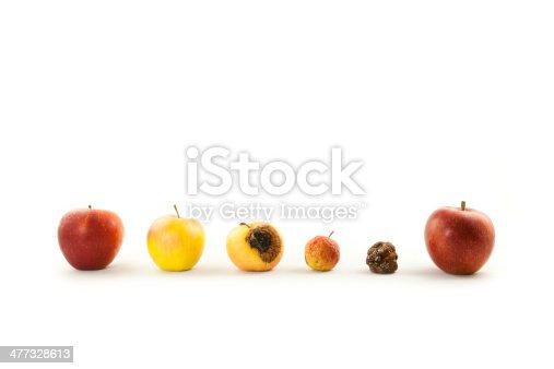 eine Reihe Äpfel von knackig bis verfault