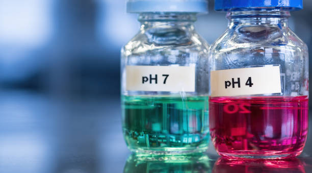 pH 7 (green) and 4 buffer (red) solutions in glass bottles stock photo
