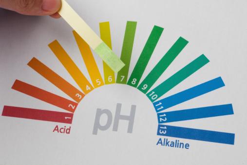 ph paper test