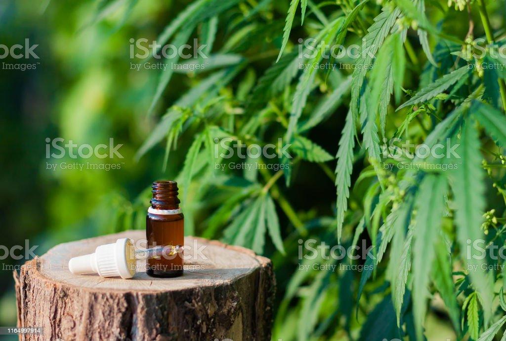 Pharmaceutical CBD oil. Herbal organic medicine product. Natural herb...