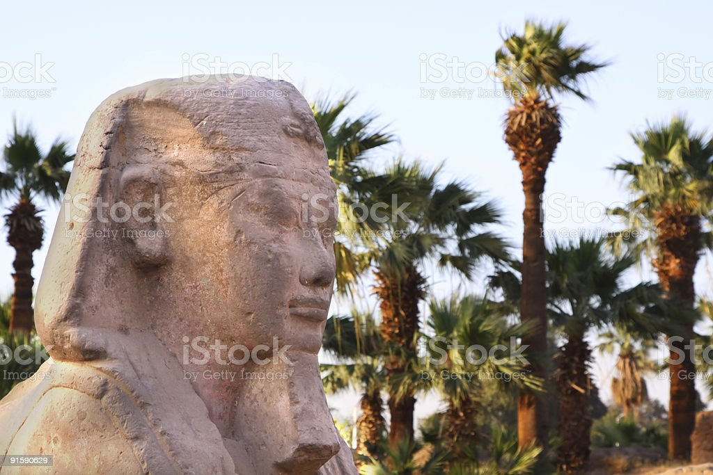 Pharoh sculpture with palm trees royalty-free stock photo