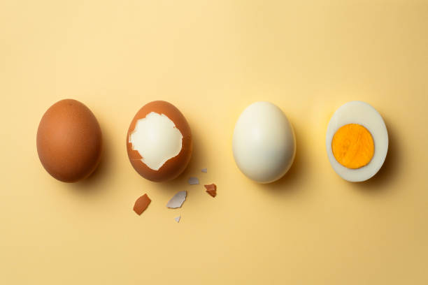 Phases of a boiled egg stock photo