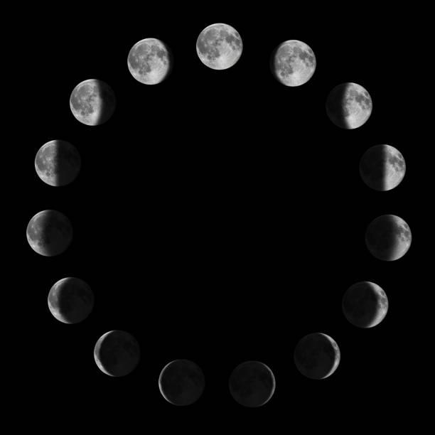 fasi lunari. ciclo lunare lunare. - luna gibbosa foto e immagini stock
