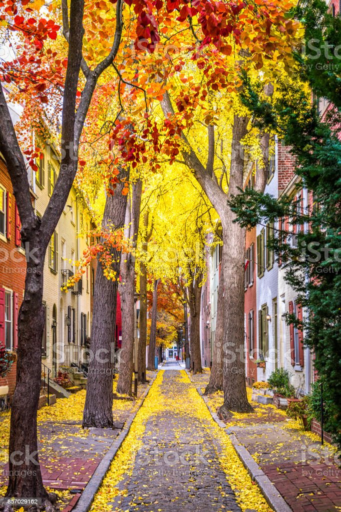 Philadelphia Autumn Streets stock photo