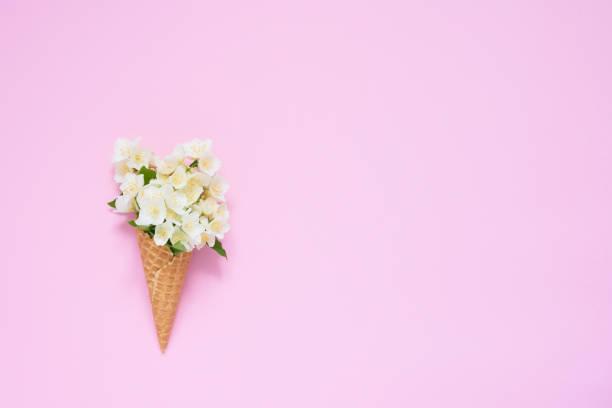 philadelphus oder mockorange blüten in einem waffel-eiskegel auf rosa hintergrund. sommerkonzept. kopierplatz, obere ansicht. - jasmin party stock-fotos und bilder