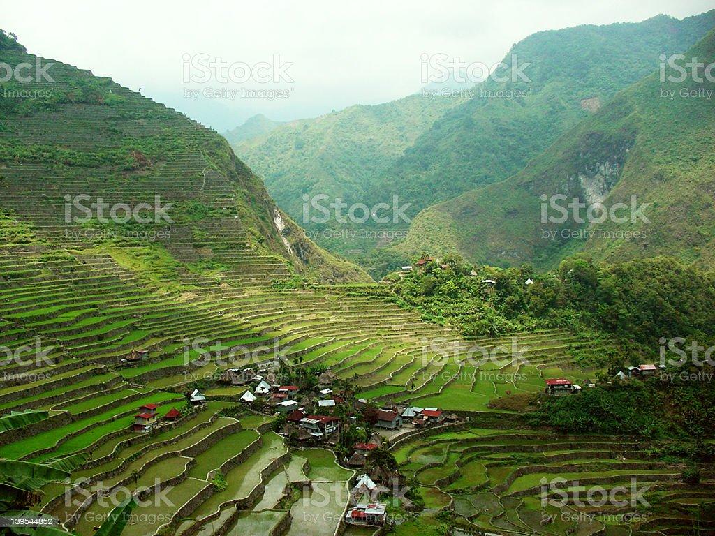 Philippine Rice Terraces stock photo