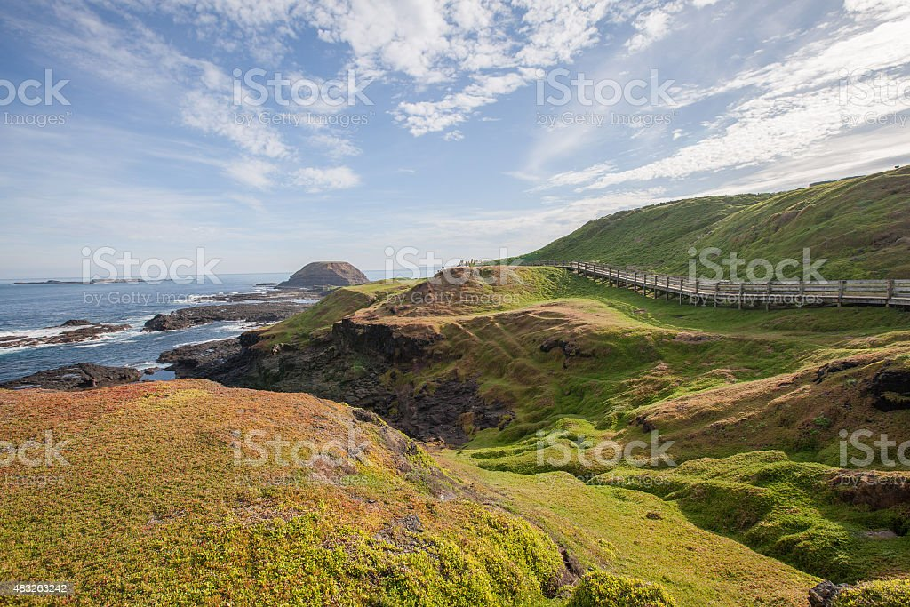 Phillip Island Nature Park - green hills and rugged coastline stock photo