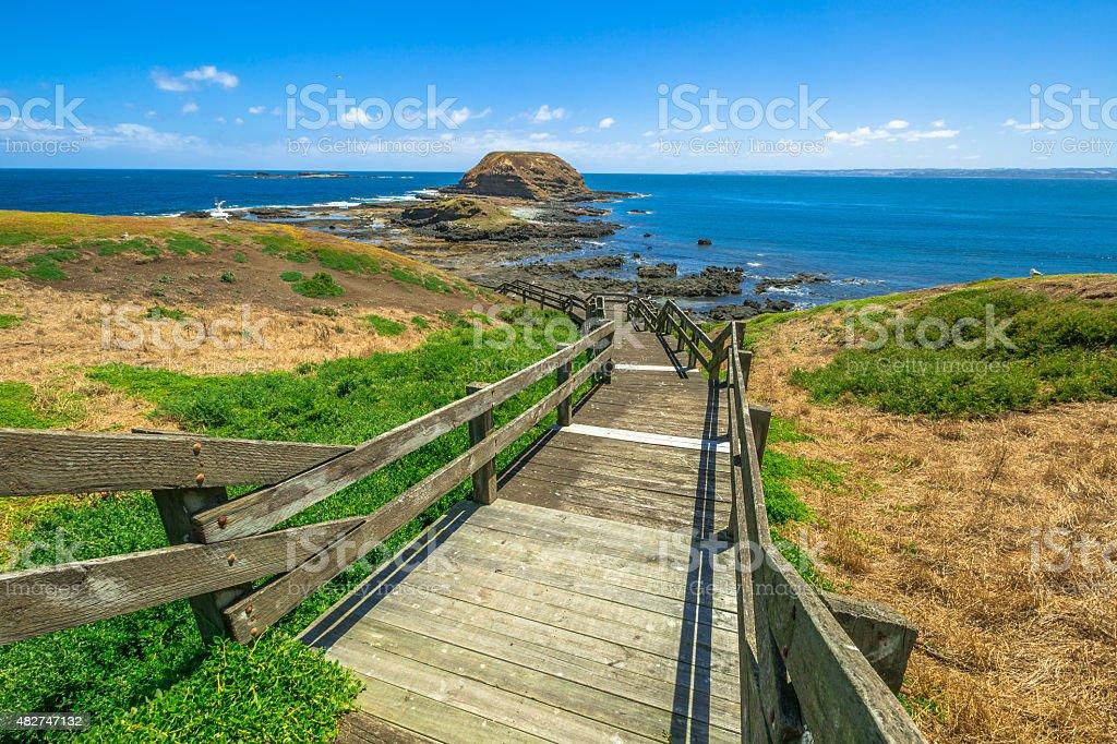 Phillip Island Nature Park stock photo