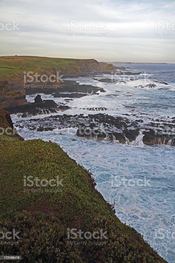 Phillip Island royalty-free stock photo