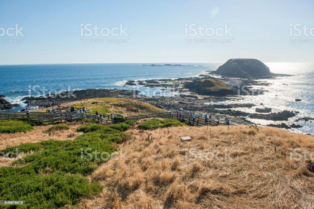 Phillip island stock photo