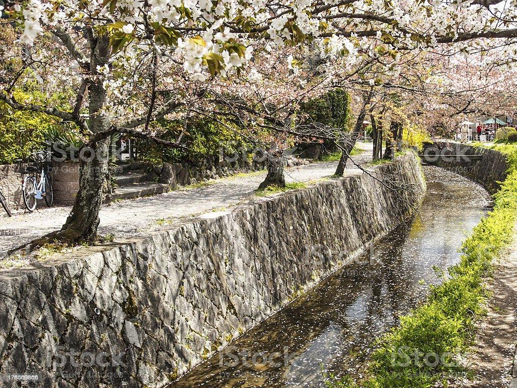Philosopher's path, Kyoto, Japan stock photo