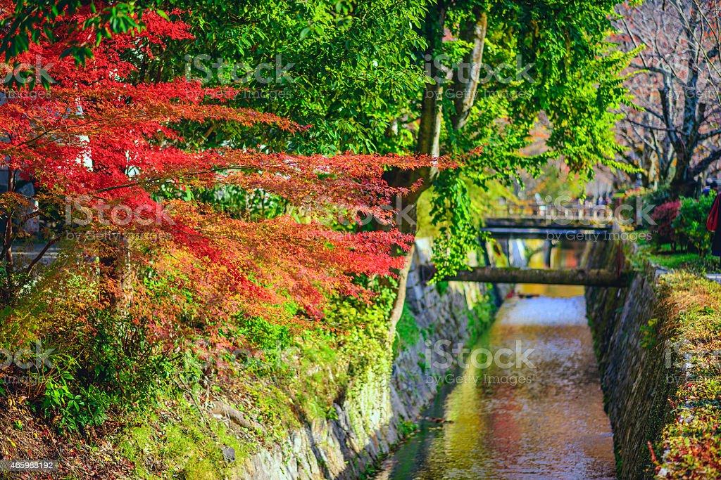 Philospher's Path in Kyoto, Japan stock photo