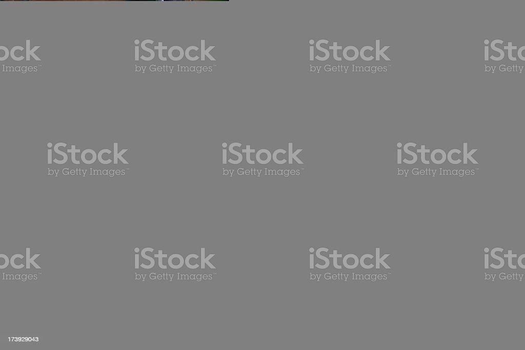 Phishing royalty-free stock photo