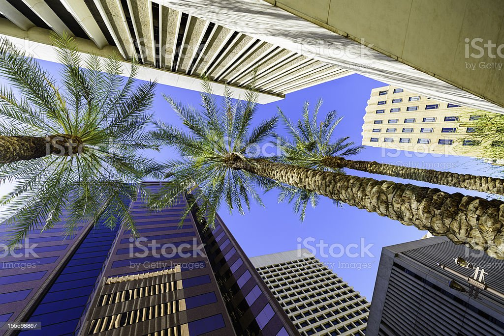 Phoenix Arizona skyscrapers and palm trees cityscape stock photo