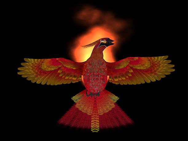Phoenix pájaro fuego - foto de stock