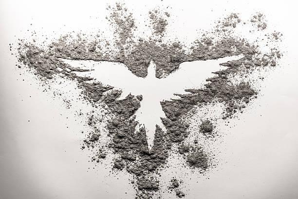 Phoenix dibujo hecho en ceniza - foto de stock