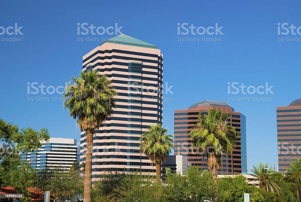 Phoenix highrises and palm trees stock photo