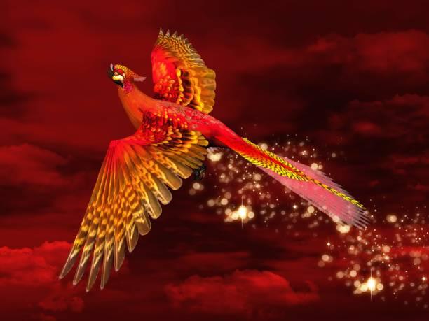 Phoenix sobre un fondo rojo intenso - foto de stock