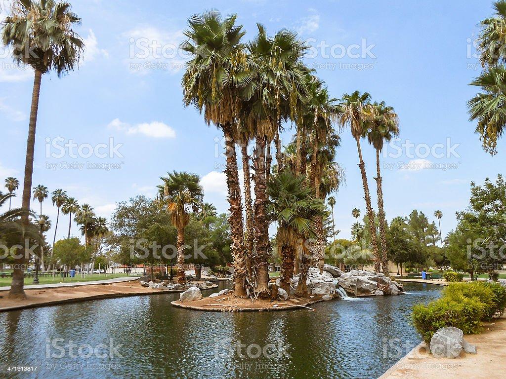 Phoenix park with palm tree royalty-free stock photo