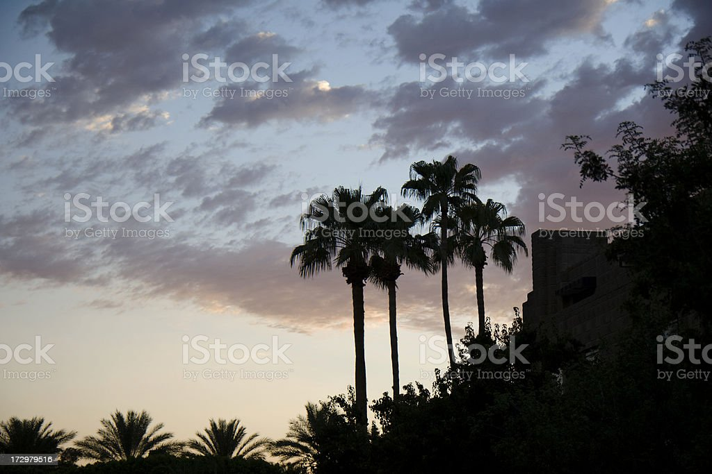 Phoenix Resort royalty-free stock photo