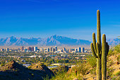 Phoenix midtown skyline with a Saguaro Cactus and other desert scenery in the foreground.