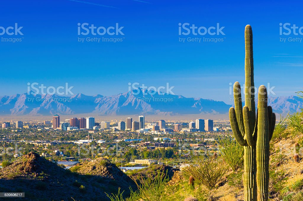 Phoenix skyline and cactus stock photo