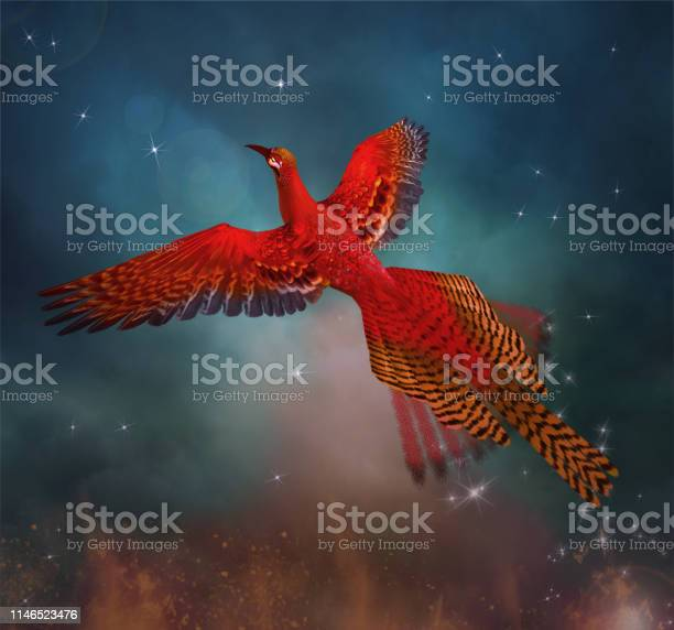 Phoenix spreading its wings in a magic sky picture id1146523476?b=1&k=6&m=1146523476&s=612x612&h=orgli htottv7rxujplovg6fp2g3ny3wzjkw16czqea=