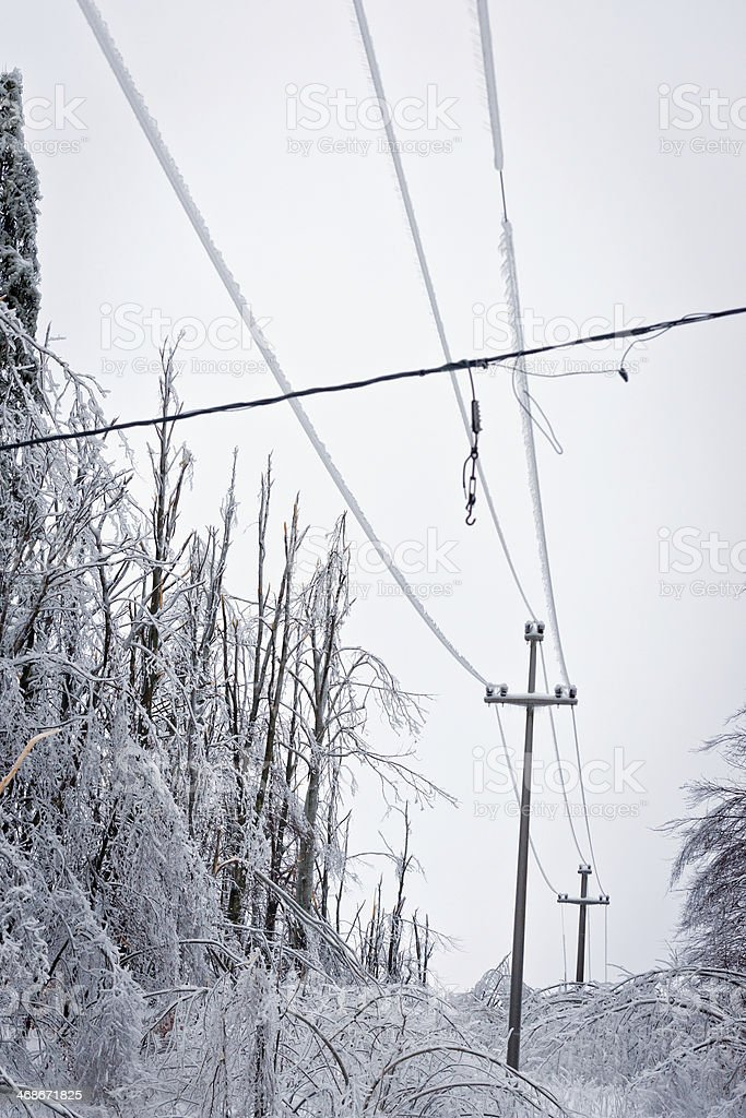 Phone lines in Winter royalty-free stock photo