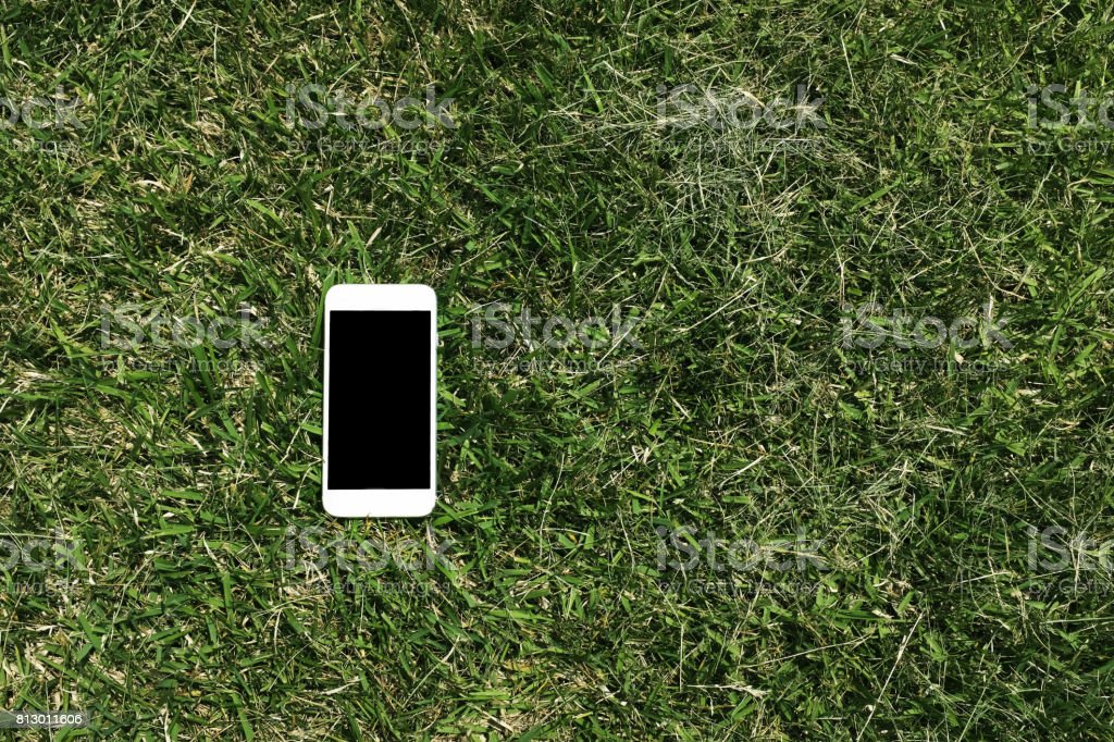 A phone on the green grass stock photo