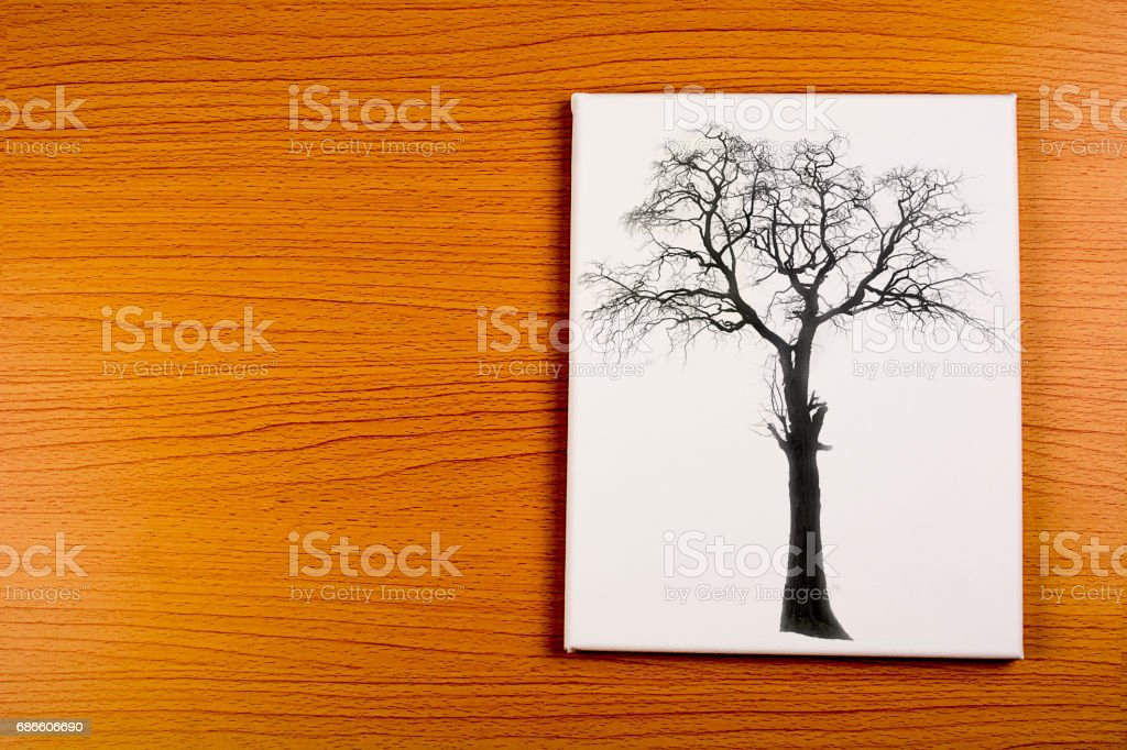photo big tree on wood texture royalty-free stock photo