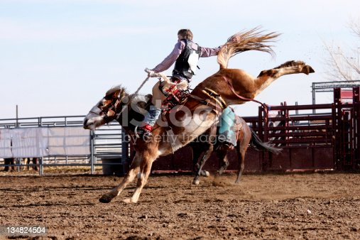 Cowboy on Bucking Bronco.