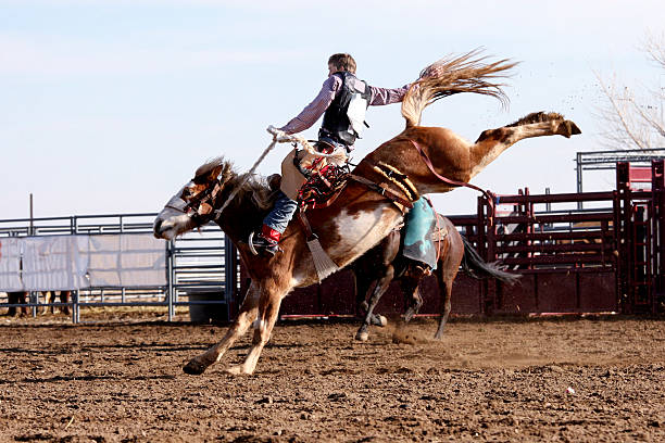 Foto Cowboy on Bucking Bronco - foto de stock