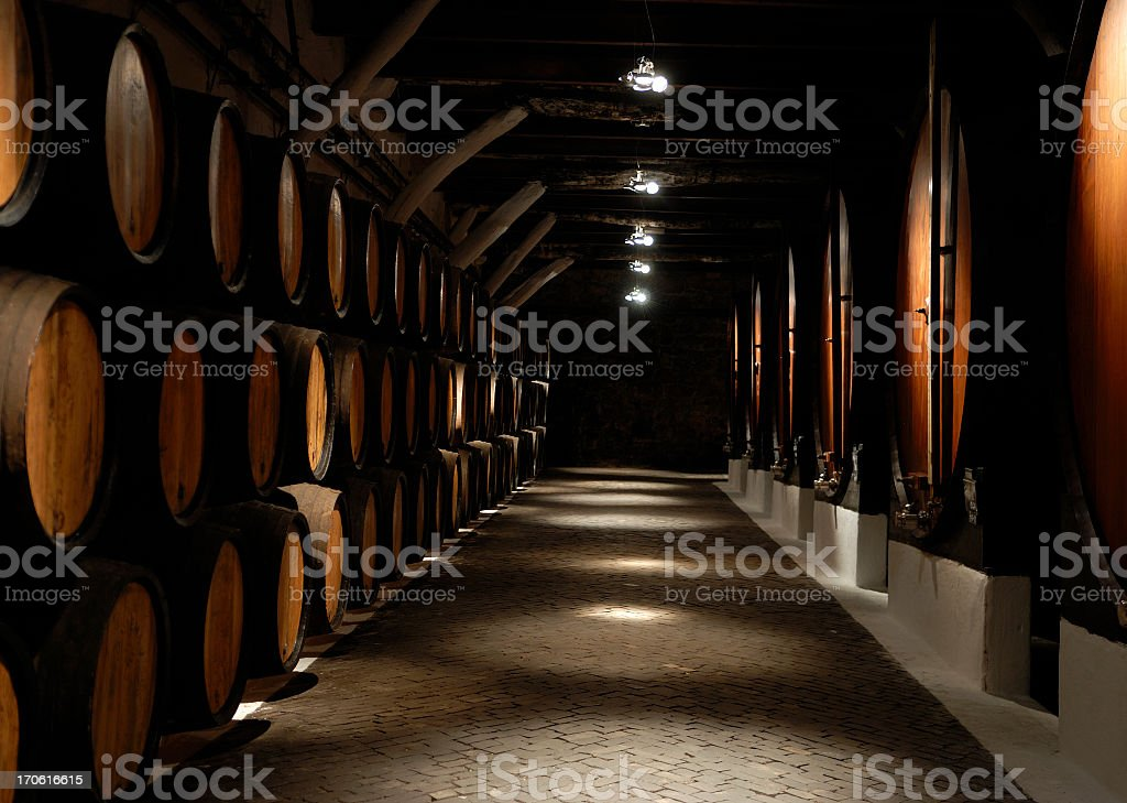 Photo down row in wine cellar showing multiple barrels stock photo