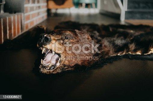 a bear rug on the floor