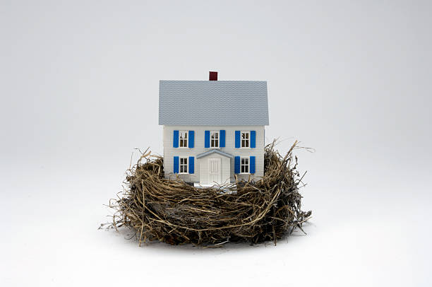 Photo of a house inside a nest, representing a nest egg stock photo