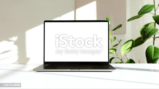 The photo of a laptop on a white desk with a green plant